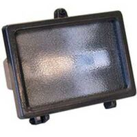 Halogen Security Light