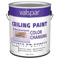 CEILING PAINT GAL 1420 COLOR CHANGE