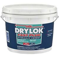 Drylok Fast Plug, 4 Lbs