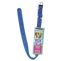 Aspen Pet 15458 Dog Collars