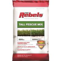 Pennington Seed 100081768 The Rebels Grass Seed, Tall Fescue Blend, 3 Lb