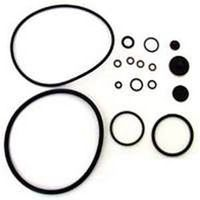 Chapin 6-5351 Compression Sprayer Repair Kit