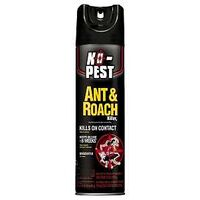 SPRAY ANT AND ROACH 17.5OZ