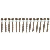 Square Collated Deck Screw, #8 x 2 1/2""