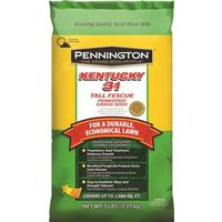 Pennington Seed 100516050 Kentucky 31 Grass Seed, Tall Fescue, 5 Lb