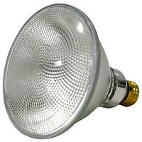 Halogen Floodlight Bulb, 60 Watt