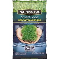 Pennington Seed 100086847 Smart Seed Grass Seed, Kentucky Bluegrass, 3 Lb