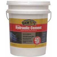 Damtite 07502 Waterproof Hydraulic Cement