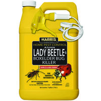 Beetle & Box Elder Bug Killer, 1 Gal