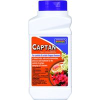 BONIDE 171 CAPTAN FRUIT/ORN FUNGICIDE 8OZ