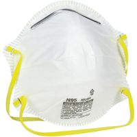 MSA 10102481 Harmful Dust Respirator