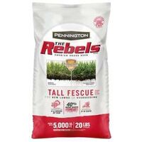 Rebel Fescue Blend Grass Seed