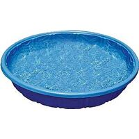 Kiddie Pool, 3'