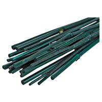 Bamboo Plant Stakes, 2' Green