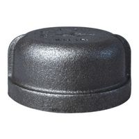 World Wide Sourcing 18-2B Black Pipe Malleable Cap