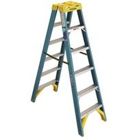 Werner T6006 Twin Ladder