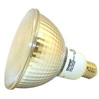 Compact Fluorescent Lamp, 23W