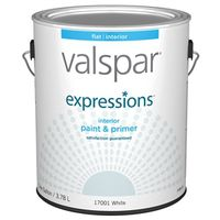 Valspar 17001 Latex Paint