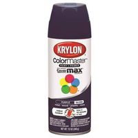 ColorMaster K05191301 Spray Paint
