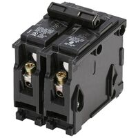 20 Amp 2 Pole Interchangeable Breaker