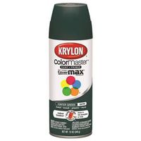 ColorMaster K05350201 Spray Paint