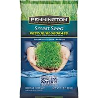 Smart Seed Tall Fescue Bluegrass Grass Seed, 3lb