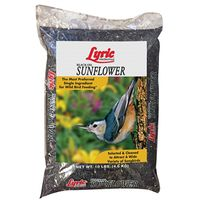 Lyric 2647277 Sunflower Seed