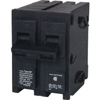 100 Amp 2 Pole Circuit Breaker