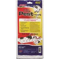 TRAP GLUE PEST SPIDER/SNAKE4PK