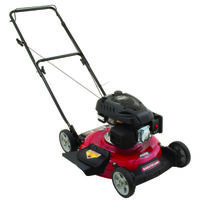 PUSH MOWER, 21IN 139CC 2N1