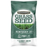 Kentucky 31 100509303 Penkoted Economical Tall Fescue Grass Seed, 25 lb, Medium Green