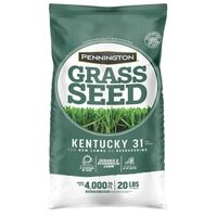 Kentucky 31 Penkoted Grass Seed, 25lb