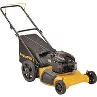 PUSH MOWER, 21IN, 3N1 BRIGGS&STRATTON