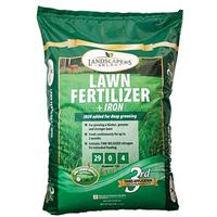 FERTILIZER W/IRON 29-0-4 15M