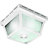 Motion Ceiling Light, Frosted White