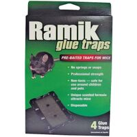 Ramik Mouse Glue Tray, 4 Pk