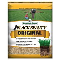 Jonathan 10315 Black Beauty Grass Seed, 25 lb, Bag, 7500 sq-ft, Dark Green