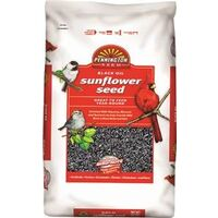 Black Oil Sunflower Seed Wild Bird Food, 50lb