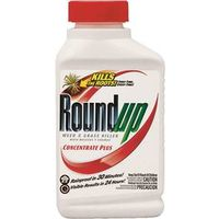 ROUNDUP WEED & GRASS KILLER CONCENTRATE, 16OZ