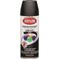 ColorMaster K05356501 Spray Paint