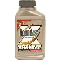 Extended Control Weed & Grass Killer, 16 oz