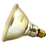 Outdoor Incandescent Flood Bulb, 65 Watt Par38