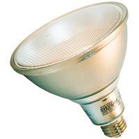 BULB LED ULTRA 120W PAR38 3K