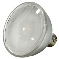 LED 11W PAR30 DIM 3000K FLOOD