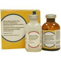 VACCINE EXPRESS FP10 10ML 5DS