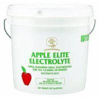 ELECTROLYTE APPLE 20LB