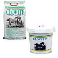 CLOVITE VIT SUPPLMENT&COND 5LB