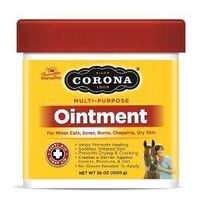 OINTMENT 36OZ
