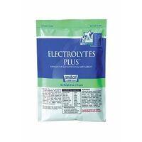 ELECTROLYTE PLUS 10LB PL
