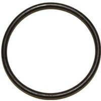 Danco 35740B Faucet O-Ring